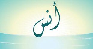 صورة اسماء ولاد جديدة , اجمل القاب الصبياني النادرة
