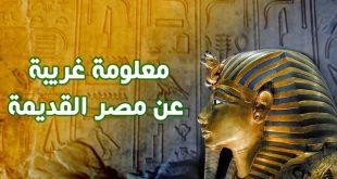 صور معلومات عن مصر , تاريخ جمهورية مصر العربية ام الدنيا