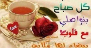 صورة صور صباحيه جميله , احلى صور تحية الصباح وصباح الخير للاصدقاء