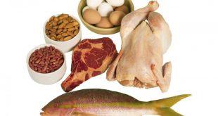 صورة اكلات غنية بالبروتين , حسن صحتك لما تعرف وتاكل الاكل الغني بالبروتين