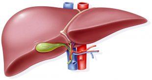 صورة ارتفاع وظائف الكبد , ازاى اعرف ان انزيمات الكبد عالية