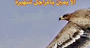 شعر يمني قوي , اقوي ابيات من الشعر الرائعه