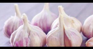 صورة للتخلص من رائحة الثوم في الشعر , وصفات طبيعية للشعر
