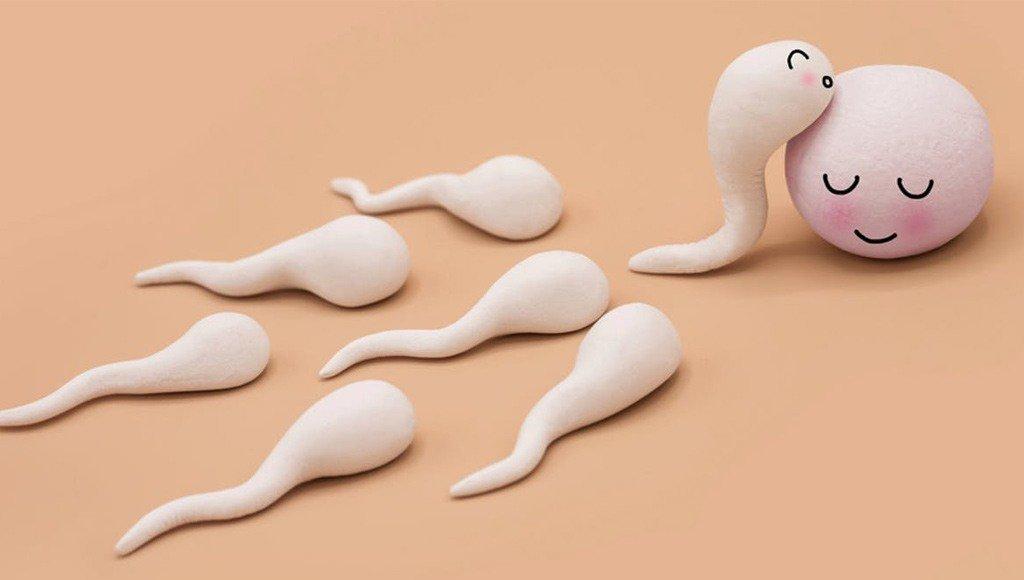 صورة هل يحدث حمل بدون انزال داخل الرحم , عدم حدوث ايلاج هل من الممكن ان يحدث حمل