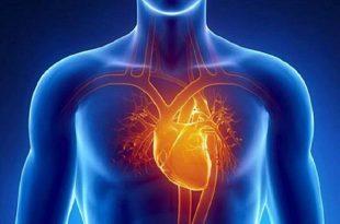 صورة الم تحت القلب , وغز شديد في الصدر ما اسبابه