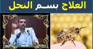 صورة اضرار العلاج بسم النحل , الوقايه خير من العلاج
