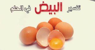 البيض في الحلم , تفسير رؤية البيض بكل انواعه في المنام