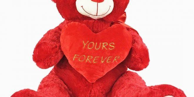 صورة دبدوب عيد الحب , اجمل هدايا الحب