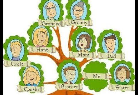 صورة كيف ارسم شجرة العائلة , تعلم طريقة سهلة لمعرفة شجرة عائلتك