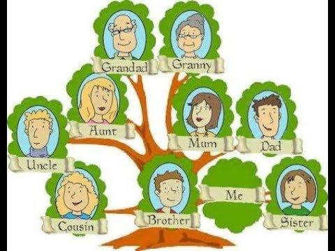 صورة كيف ارسم شجرة العائلة , تعلم طريقة سهلة لمعرفة شجرة عائلتك 3568