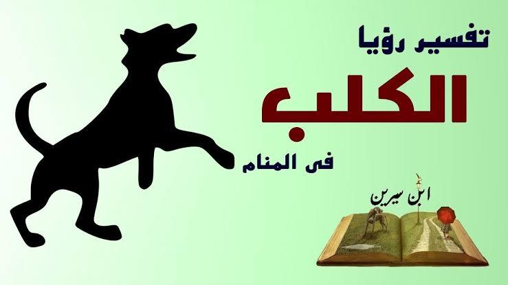 صورة ما تفسير حلم الكلاب , رؤية الكلب في الحلم وغموض تفسيره