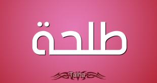 صورة معنى اسم طلحة , اسم جميل وهو احد المبشرين بالجنة