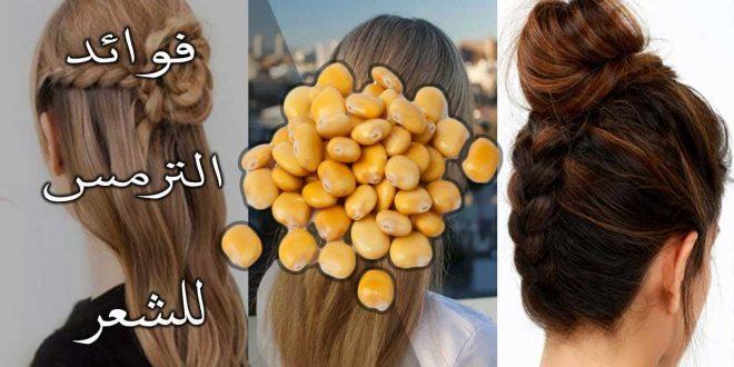 صورة زيت الترمس لازالة الشعر , اهم فوائد زيوت الترمس المر