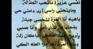 صورة قصائد عن الصقر , طائر من الطيور الجارحة لكن له اهمية في حياة العرب 880 3 310x165
