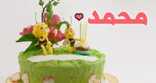 صورة تورتة مكتوب عليها اسم محمد , عيد ميلاد اخويا عايزة افاجئوا