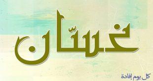 صورة ما معنى اسم غسان , لكل غسان اعرف معنى اسمك