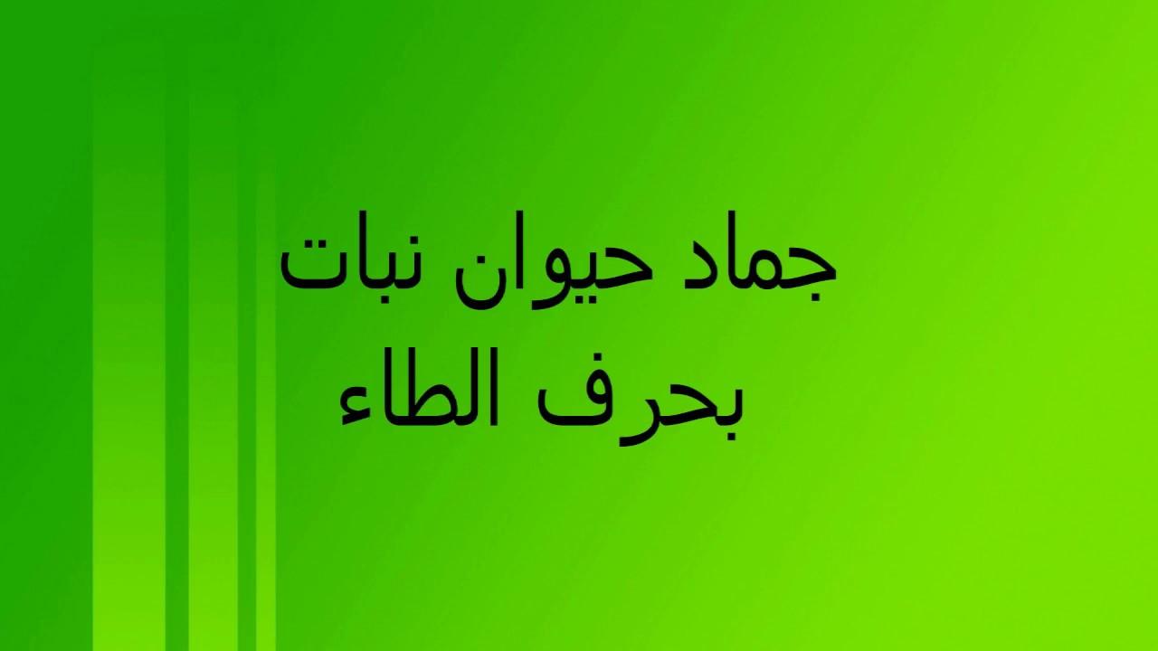 صورة جماد بحرف ط , بلعب مع اصاحبي وعايزة جماد يبدء بحرف معين
