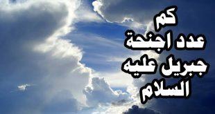 صورة كم جناح لجبريل , سبحان الله ملاك جميل له شكل بديع