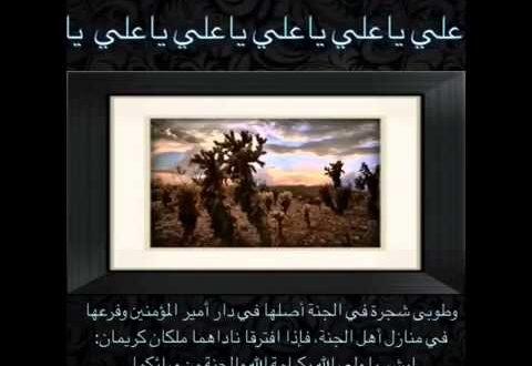 صورة ما معنى طوبى , شجرة في الجنة ذكرت في القران الكريم