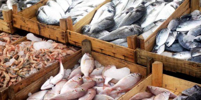 صورة تفسير حلم شراء السمك , شفت في المنام انى بشترى سمك
