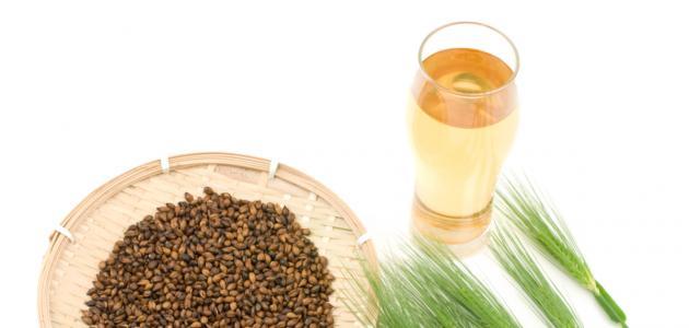 صورة الشعير لصحة الجسم , فوائد شرب الشعير