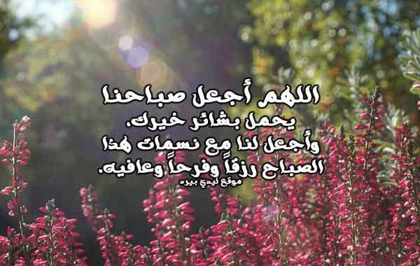 صورة يارب ارزقني وباركلي في يومي , دعاء التوكل على الله في الصباح 5253 6
