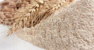 صورة نخالة القمح فوائدها لا تعد ولا تحصى , فوائد نخالة القمح