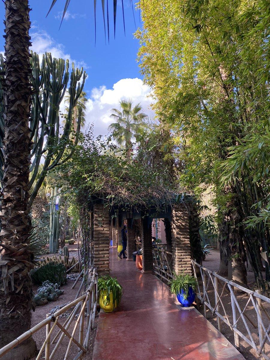 صورة افضل الاماكن في مراكش ,  مراكش بلد السحر والتاريخ والطبيعة الخلابة 3504 7